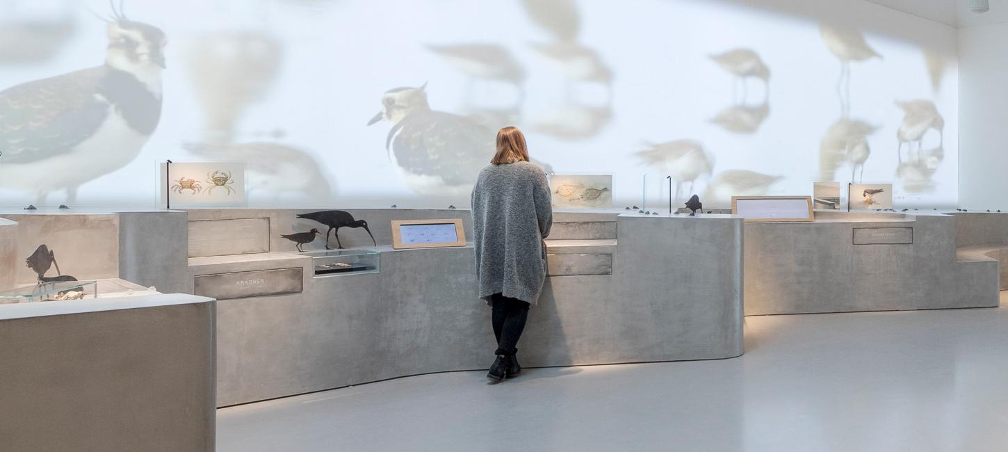 Exhibition area in the Wadden Sea Center | By the Wadden Sea