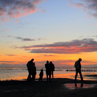 Wadden Sea National Park at sunset | By the Wadden Sea