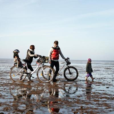By bike | By the Wadden Sea